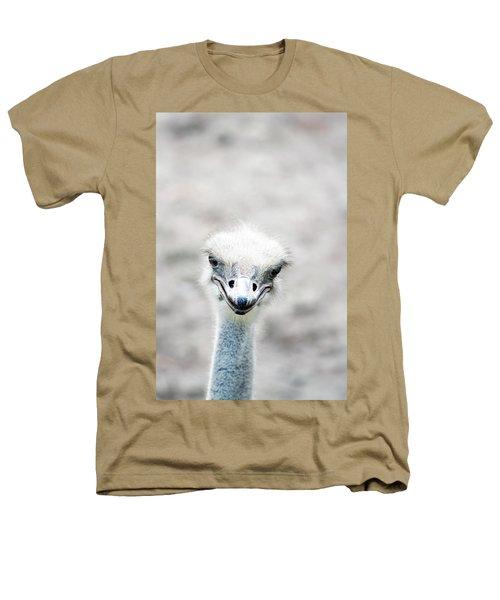 Ostrich Heathers T-Shirt by Lauren Mancke