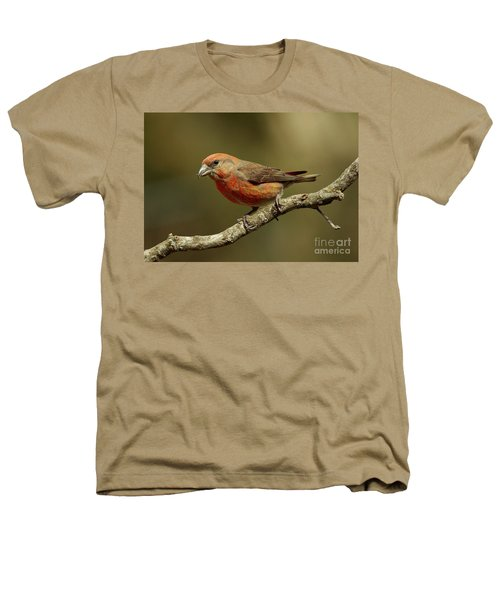 Roaming Crossbills-1 Heathers T-Shirt