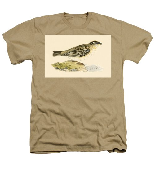 Rock Sparrow Heathers T-Shirt by English School