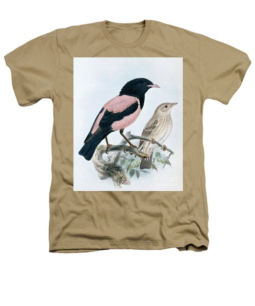 Rose Colored Starling Heathers T-Shirt
