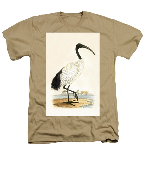 Sacred Ibis Heathers T-Shirt by English School