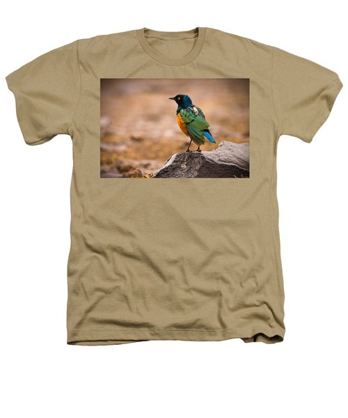 Superb Starling Heathers T-Shirt by Adam Romanowicz