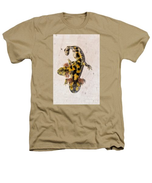 Two-headed Near Eastern Fire Salamande Heathers T-Shirt by Shay Levy