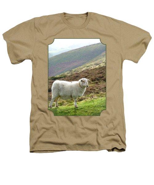 Welsh Mountain Sheep Heathers T-Shirt