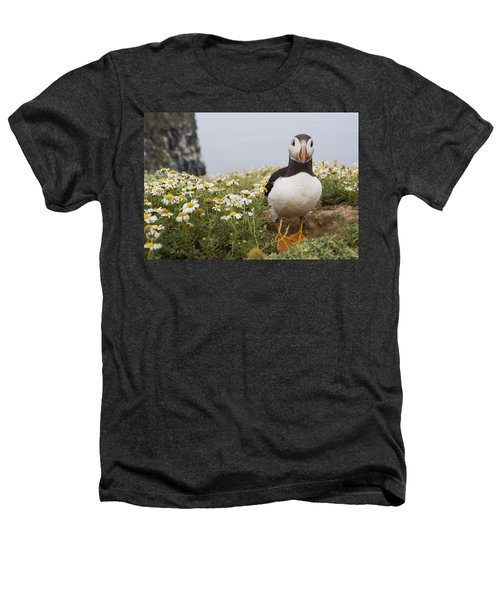 Atlantic Puffin In Breeding Plumage Heathers T-Shirt
