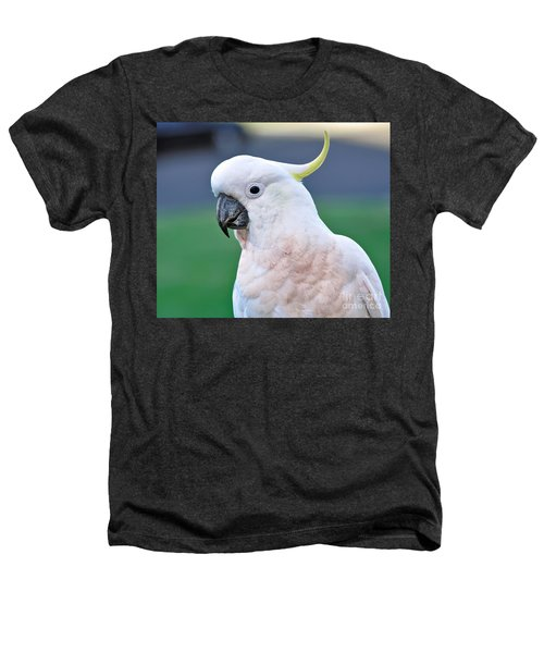 Australian Birds - Cockatoo Heathers T-Shirt by Kaye Menner