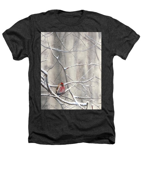 Eyeing The Feeder Alaskan Redpoll In Winter Heathers T-Shirt by Karen Whitworth