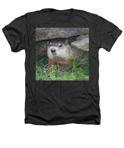 Groundhog Hiding In His Cave Heathers T-Shirt
