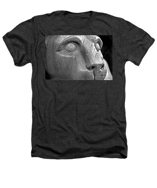 Heinz Warneke's Mountain Lion Heathers T-Shirt