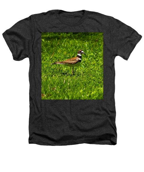 Killdeer Charadrius Vociferus 2 Heathers T-Shirt by Howard Tenke