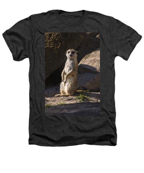 Meerkat Looking Forward Heathers T-Shirt by Chris Flees