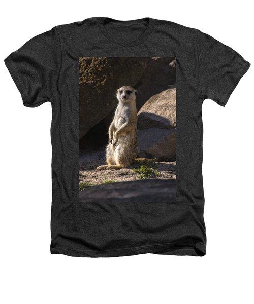 Meerkat Looking Forward Heathers T-Shirt