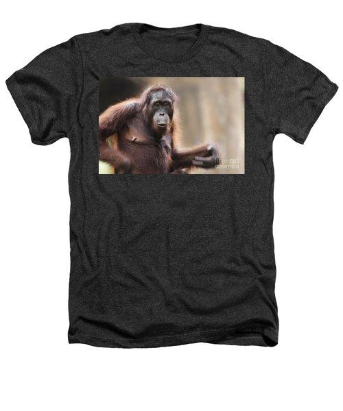 Orangutan Heathers T-Shirt by Richard Garvey-Williams