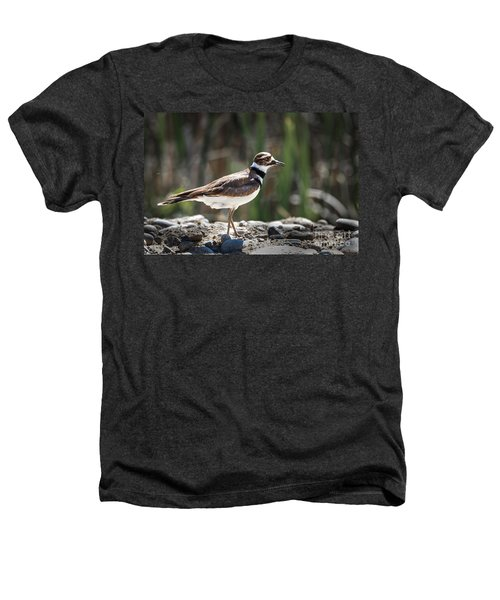 The Killdeer Heathers T-Shirt by Robert Bales