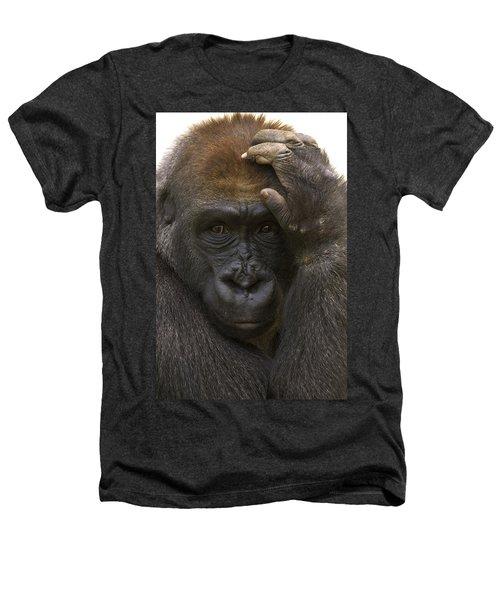 Western Lowland Gorilla With Hand Heathers T-Shirt by San Diego Zoo