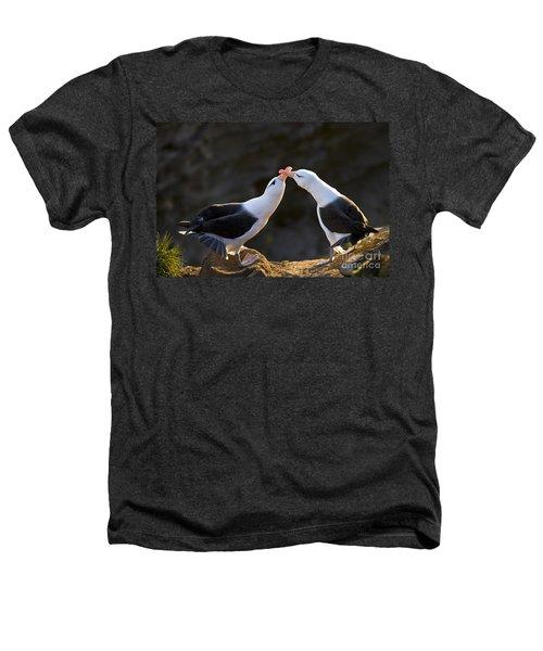 Black-browed Albatross Couple Heathers T-Shirt