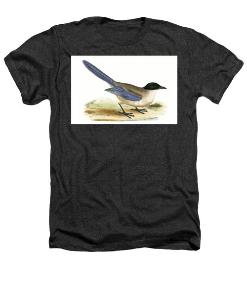Azure Winged Magpie Heathers T-Shirt