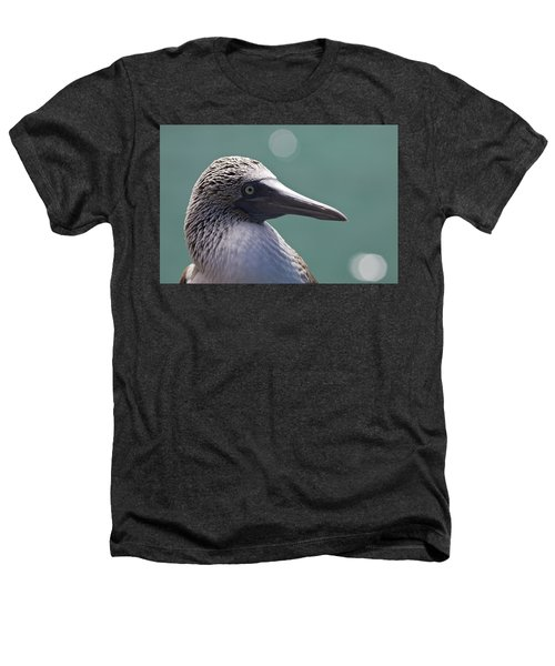 Blue Footed Booby II Heathers T-Shirt by Dave Fleetham