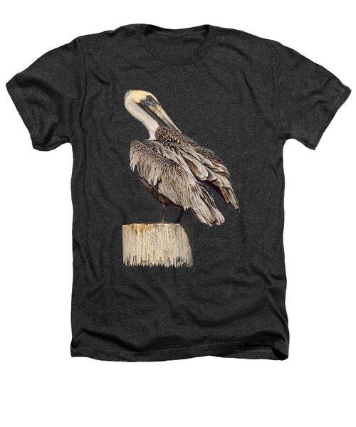 Brown Pelican - Preening - Transparent Heathers T-Shirt by Nikolyn McDonald