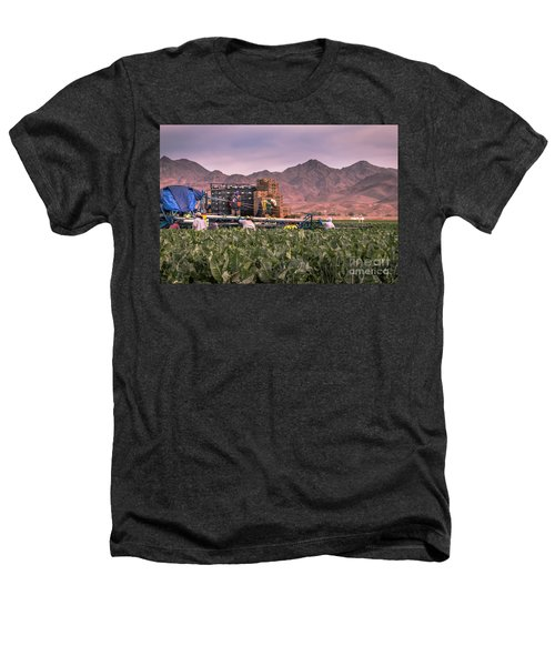 Cauliflower Harvest Heathers T-Shirt by Robert Bales