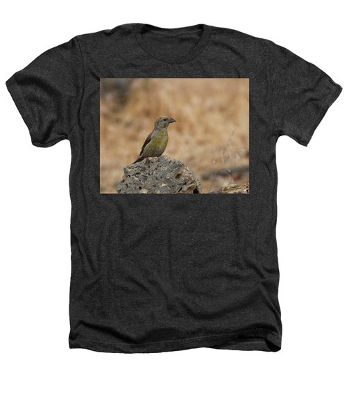 Female Red Crossbill Heathers T-Shirt by Doug Lloyd