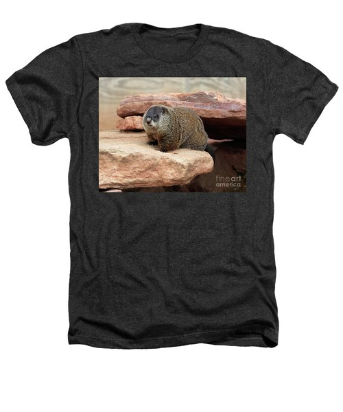 Groundhog Heathers T-Shirt by Louise Heusinkveld