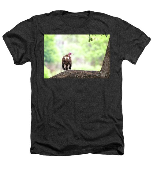 Hooded Vulture Heathers T-Shirt