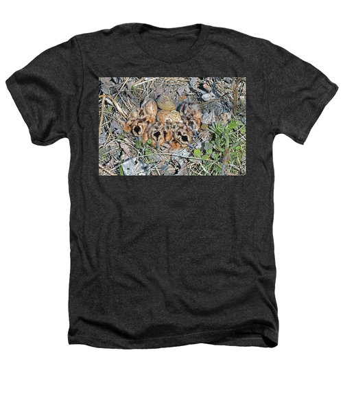 Just Hatched American Woodcock Chicks Heathers T-Shirt by Asbed Iskedjian