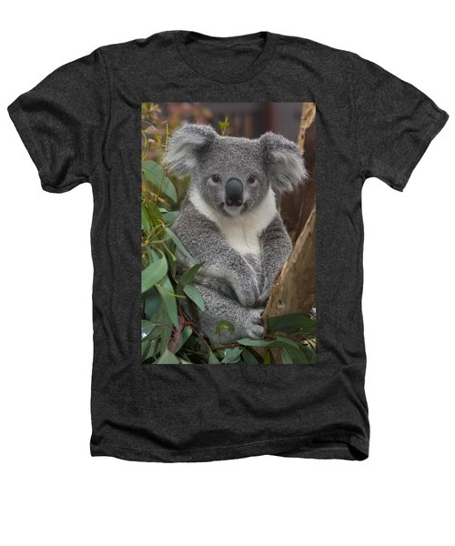 Koala Phascolarctos Cinereus Heathers T-Shirt by Zssd
