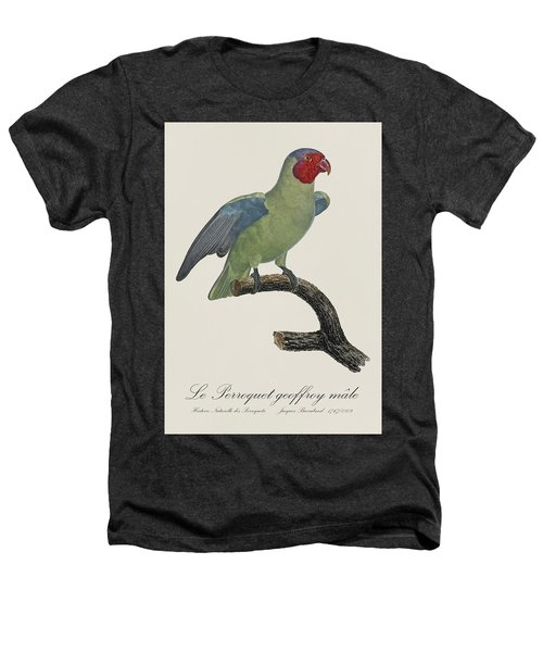 Le Perroquet Geoffroy Male / Red Cheeked Parrot - Restored 19th C. By Barraband Heathers T-Shirt by Jose Elias - Sofia Pereira