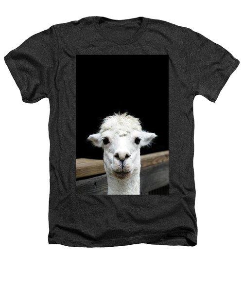Llama Heathers T-Shirt by Lauren Mancke