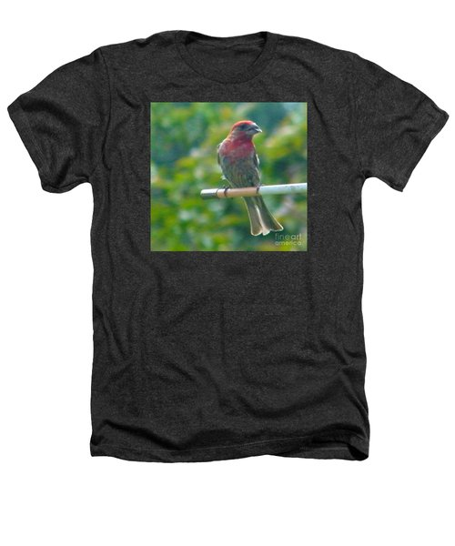 Male Crossbill With Sunflower Seed    August  Indiana Heathers T-Shirt by Rory Cubel