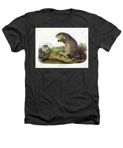 Maryland Marmot, Woodchuck, Groundhog Heathers T-Shirt