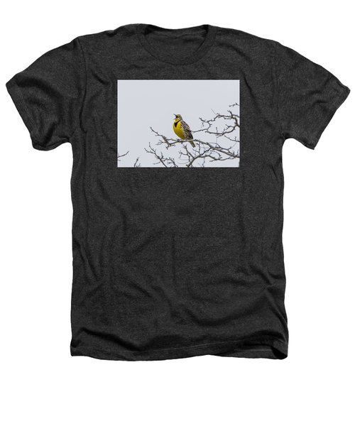 Meadowlark In Tree Heathers T-Shirt by Marc Crumpler