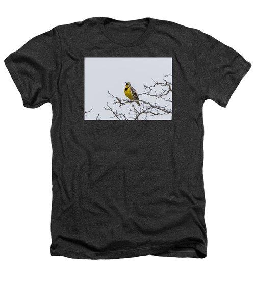 Meadowlark In Tree Heathers T-Shirt