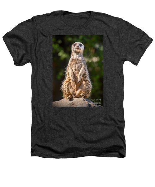 Morning Sun Heathers T-Shirt by Jamie Pham