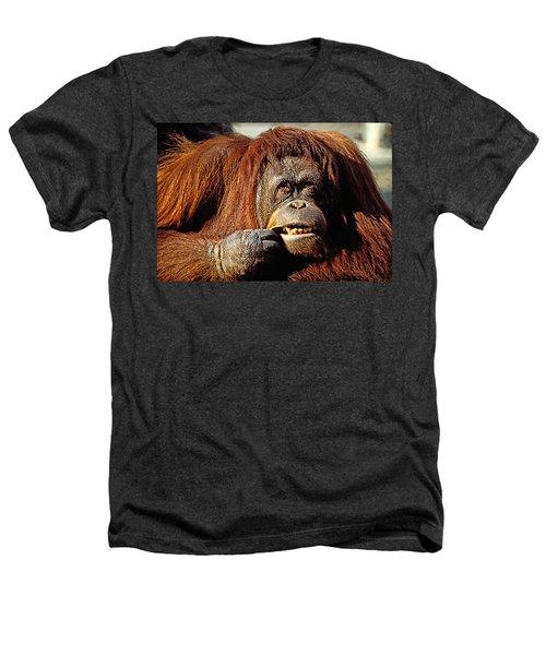 Orangutan  Heathers T-Shirt