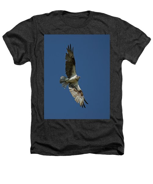 The Osprey Heathers T-Shirt