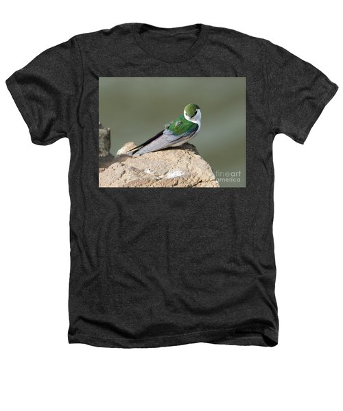 Violet-green Swallow Heathers T-Shirt by Mike Dawson