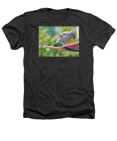 Young Crossbill Female  August  Indiana Heathers T-Shirt by Rory Cubel