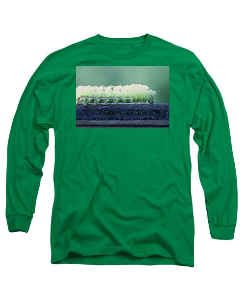 Long Sleeve T-Shirt featuring the photograph Fuzzy Caterpillar by Jane Eleanor Nicholas
