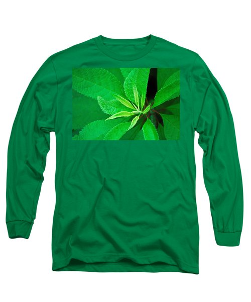 Green Long Sleeve T-Shirt by Ludwig Keck