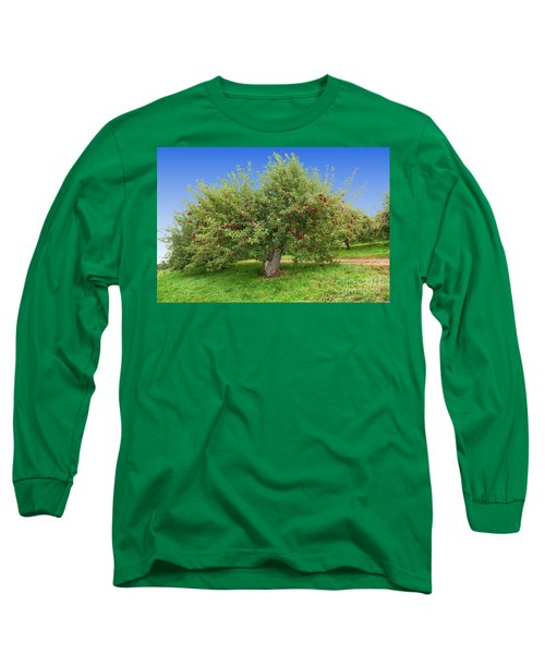 Large Apple Tree Long Sleeve T-Shirt by Anthony Sacco