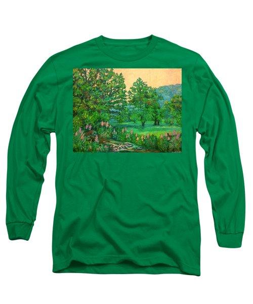 Park Road In Radford Long Sleeve T-Shirt