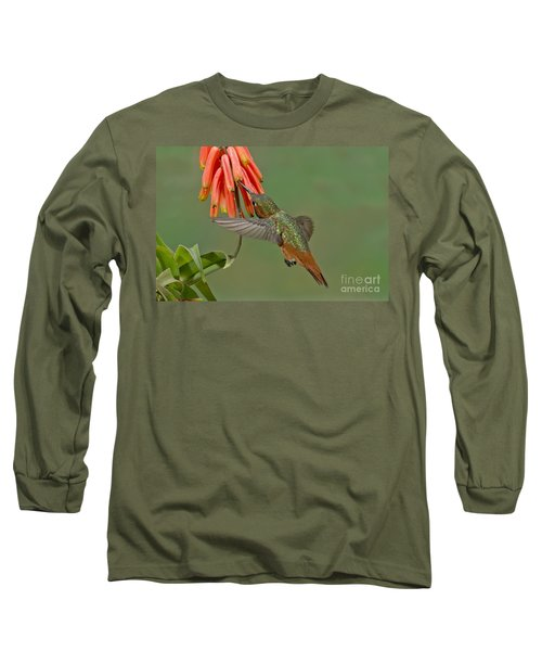 Allens Hummingbird Feeding Long Sleeve T-Shirt