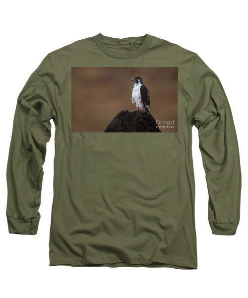 Augur Buzzard Long Sleeve T-Shirt