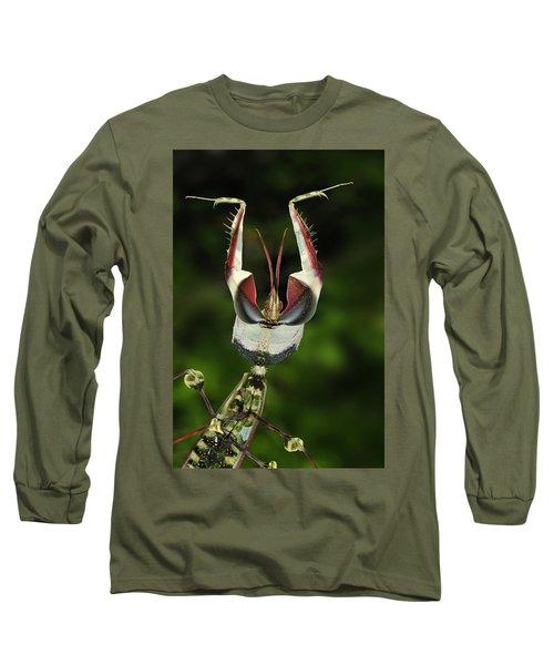 Devils Praying Mantis In Defensive Long Sleeve T-Shirt