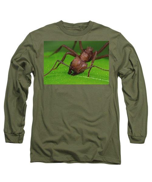 Leafcutter Ant Cutting Papaya Leaf Long Sleeve T-Shirt by Mark Moffett