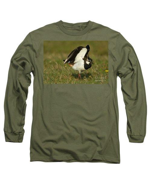 Northern Lapwing Long Sleeve T-Shirt