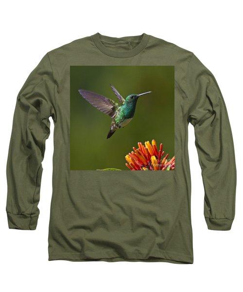 Snowy-bellied Hummingbird Long Sleeve T-Shirt by Heiko Koehrer-Wagner